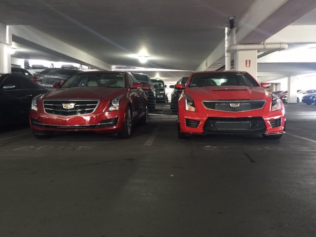 Velocity Red vs Red Obsession.JPG